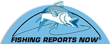 Fishing Reports Now